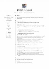 Resume Template Breathtaking Qa Resume Sample For Investment