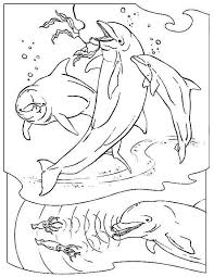 Small Picture Three Dolphin Hunting Using Their Sonar Free Animals Coloring