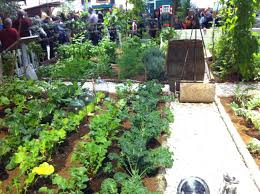 Small Kitchen Garden Small Vegetable Garden Design Layout Pebble Mosaic For The Garden