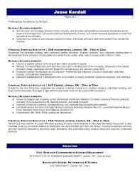 executive resume service inssite