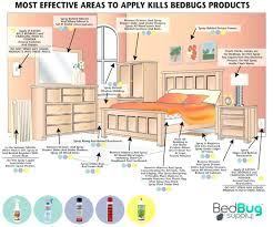 diy bed bug removal bed bug control what kills bed bugs fast j t kills bed bugs diy bed bug removal