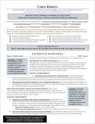 Resume Procurement Resume Examples