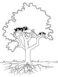 Small Picture The Tree Is Seen In Detail Coloring Pages Kleurplaten Pinterest
