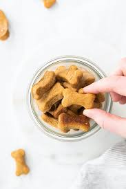 They are the perfect birthday treat! Homemade Peanut Butter Dog Treats Eating Bird Food