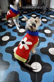 Designed 4 Dogs New Dusen Dusen Dog Sweaters Mean You Can Twin With Your Pup
