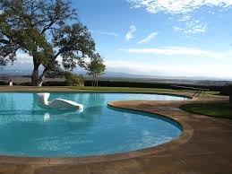 Outdoor Swimming Pool Designs: Kidney-Shaped Swimming Pools