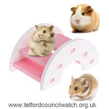 ydzn hamster toy wooden pvc bridge seesaw small animal pets guinea pig squirrel funny cage accessory pink xjlkqeozumed5435