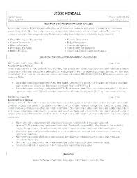 It Manager Resume Example Project Template Free Word Warehouse