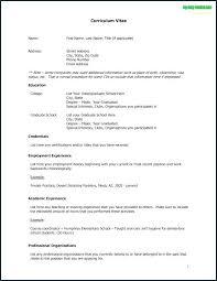 Format Resume Examples Beginner Resume Template Beginner Resume ...