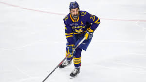 Scott Davidson Mens Ice Hockey Quinnipiac University