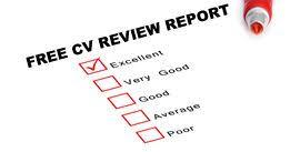 how to write a management accountant cvtime for a   cv review
