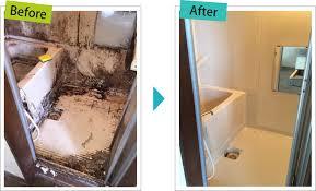 「ごみ屋敷 ハウスクリーニング」の画像検索結果
