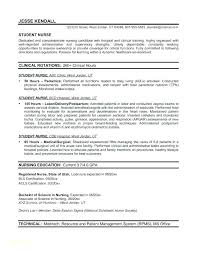 Student Nurse Resume Mesmerizing Nurses Resume Format Nurse Resume Format For Nurses Professional