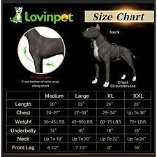 Big Dog Size Chart Lovinpet Big Dog Pajamas Summertime Watermelon Cozy Dog