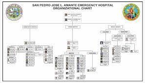 Organizational Chart Jose L Amante Emergency Hospital