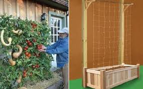 how to build a vertical garden. Delighful Build Have You Ever Thought About Vertical Gardening If Donu0027t Have A Lot Of  Space For Your Garden Gardening May Be The Perfect Solution You On How To Build A Vertical Garden E