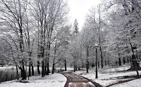 Beautiful Winter Wallpaper HD for ...