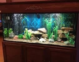 office aquariums.  Aquariums Throughout Office Aquariums R