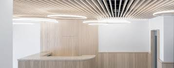 Lighting Project Offices Bars Restaurants Exhibitions