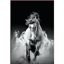 Black Horse Paint Price List In Pakistan Shubhamagrawal Me