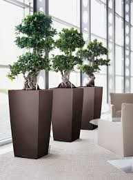 interior landscaping office. Interior Landscaping Office. And Exterior Plant Containers Office M R