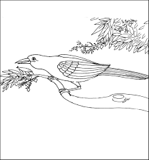 Bird sitting on a branch drawing at getdrawings free for bird sitting on a branch drawing