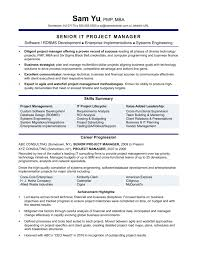 Resume Executive Summaries Executive Resume Summary Examples Resume Templates Design