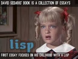 david sedaris essay me talk pretty one day by clang david sedaris book is a collection of essays