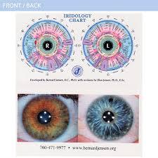 Dr Bernard Jensen Iridology Chart Wallet Size Iridology Chart