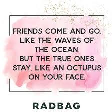 Beste Freunde Sprüche Geschenke Erinnerungen