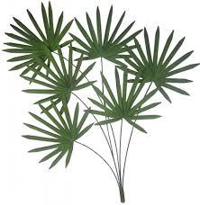 art designs palm tree bathroom trees