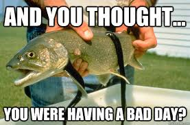 And You thought... you were having a bad day? - poor trout - quickmeme via Relatably.com
