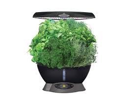 best indoor herb gardens you can