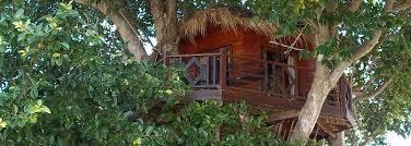 Fotogalerie TreeHouse  Than Sadej  Koh Phangan  Koh Phangan Treehouse Koh Phangan