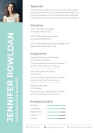Executive Resume Template Word Interesting Free Sales Executive Resume CV Template In Photoshop PSD And