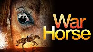 Image result for war horse picture