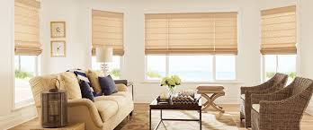 blinds picture window14