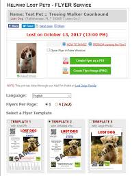 Free Flyers Lost Dogs Florida