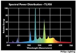 Fluorescent Light Color Spectrum Chart Color Rendering Index Cri Topbulb