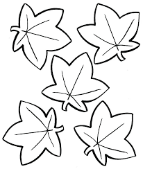 fall leaves coloring pages printable maple leaf to print