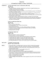 Fundraising Resume Fundraising Director Resume Samples Velvet Jobs 1