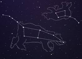 Image result for ursa minor