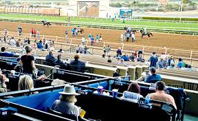 Del Mar Breeders Cup Seating Chart Tickets Breeders Cup