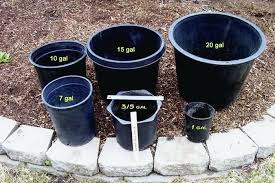 20 gallon bucket. Ten Gallon Bucket I Prefer The Gal Sized Pots They Take More Soil Mix Which Can . 20