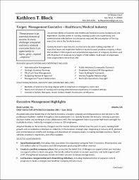 Executive Summary Resume Samples Fresh 10 Executive Level Resume
