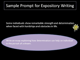 writing an expository essay ppt video online  51 sample