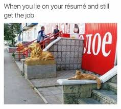 when you lie on your resume but still get the job image exceeds set limits click to view full size image