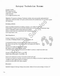 Resume. Fresh Hybrid Resume Template Word: Hybrid Resume Template ...