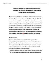world literature paper comparative essay madame bovary and page 1 zoom in