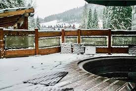 Картинки по запросу фото чани зима